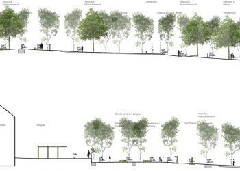 Grünanlagenplanung Schnitt