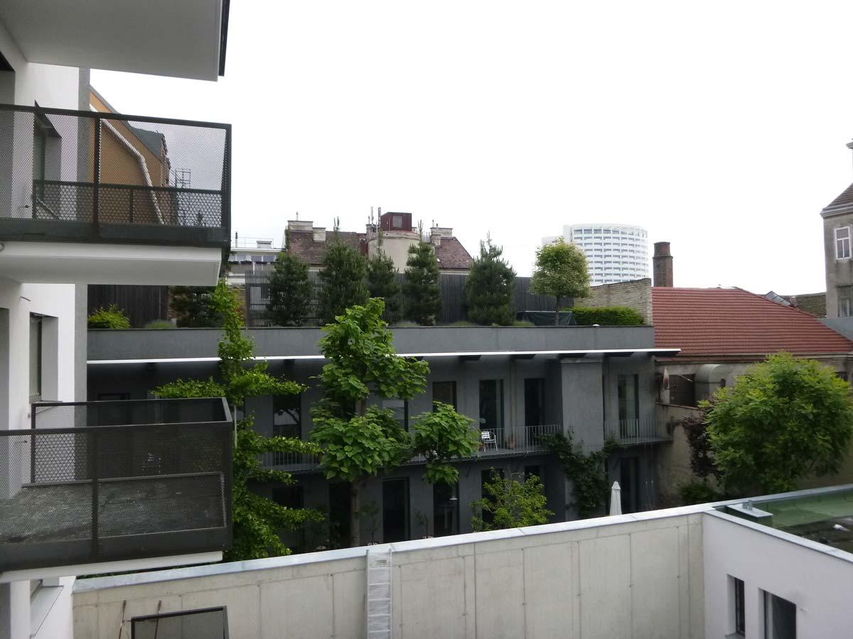 Intensivegenuetzte Dachbegruenung