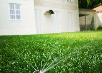 Rasen Bewässerung