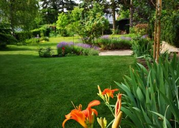 Gartengestaltung in Wien