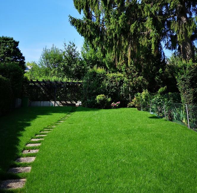 Rollrasen schmaler Garten